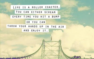 Life is a roller coaster. You can either scream everytime you hit a bump or you can throw your hands up in the air and enjoy it!