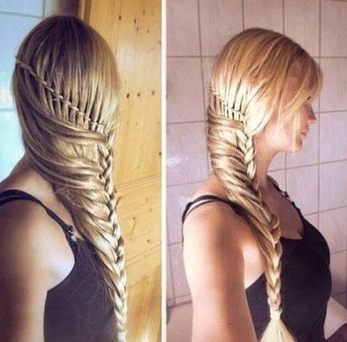 Braid / vlecht