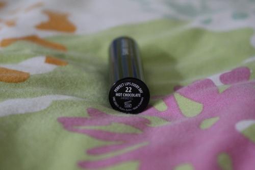 22 Chocolate Sans Soucis Lip swatch